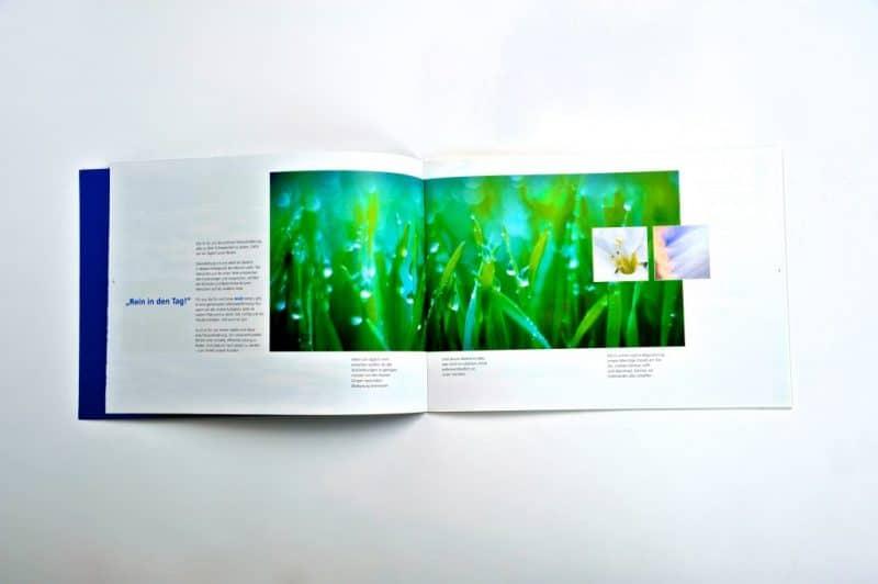 kufferath_brolli6_branding_markenentwicklung_prospekt_folder_flyer_broschure_werbung